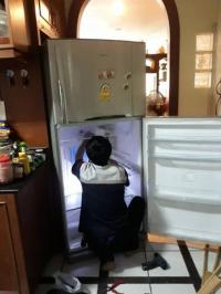 Sửa tủ lạnh tại nhà quận 11